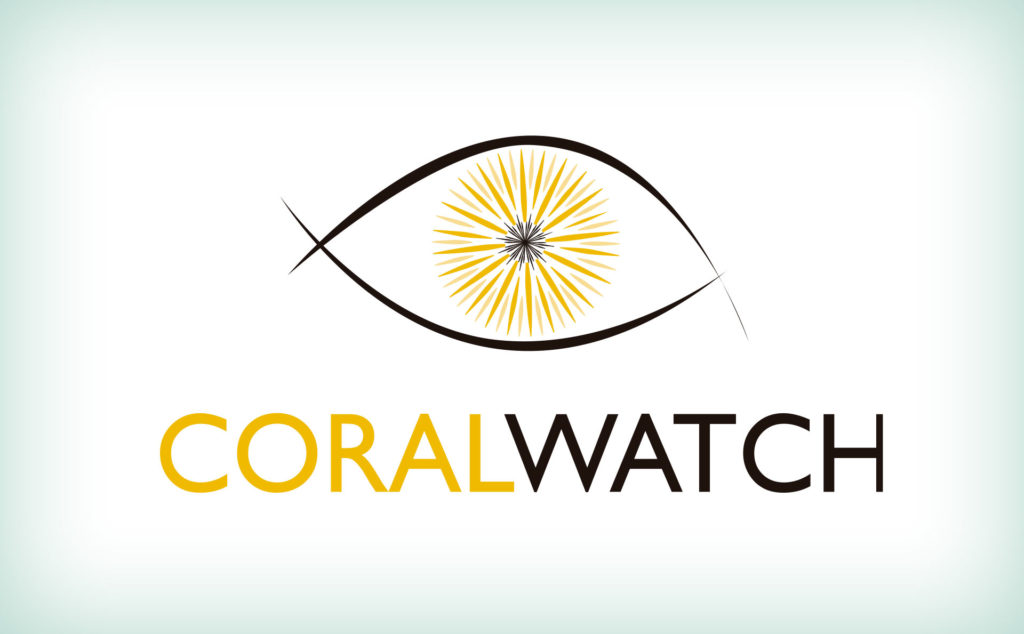 Coral Watch. Diving Koh Lanta. Buceo Koh Lanta. Hidden Depths Diving